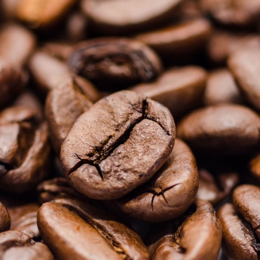 Origins of Coffee